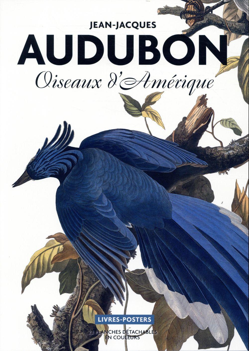 AUDUBON. OISEAUX D'AMERIQUE