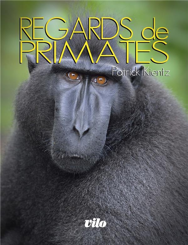 Kientz Patrick - REGARDS DE PRIMATES