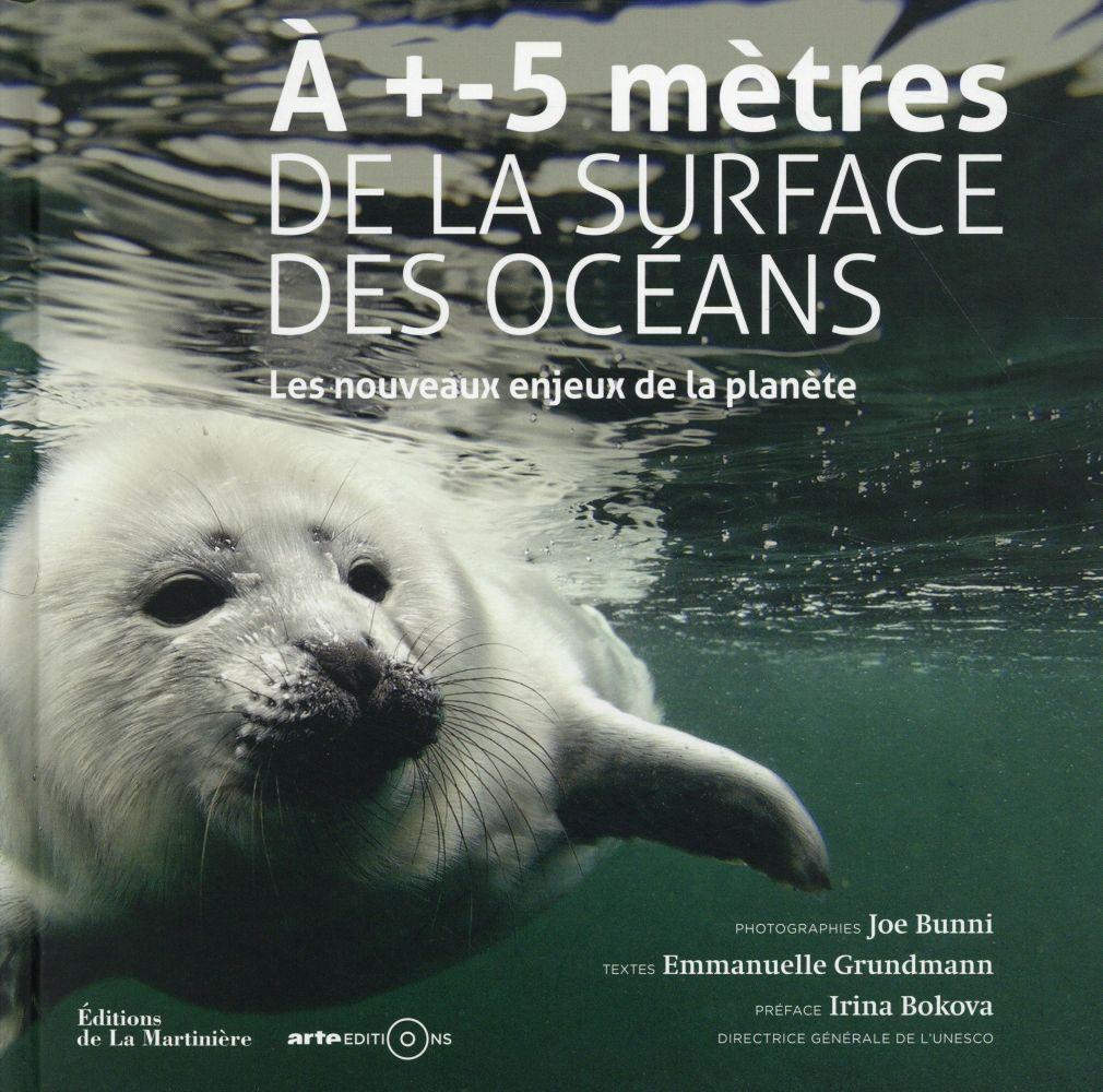 A +- 5 METRES DE LA SURFACE DES OCEANS  -  LES NOUVEAUX ENJEUX DE LA PLANETE BUNNI/GRUNDMANN La Martinière