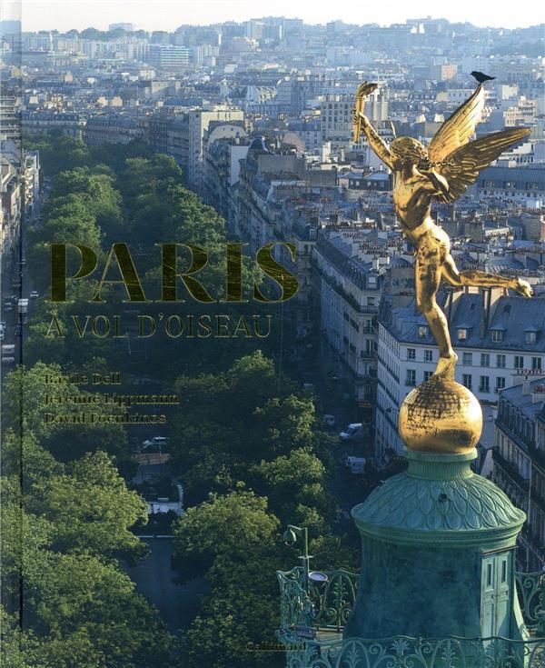 PARIS A VOL D'OISEAU FOENKINOS/LIPPMANN Gallimard-Loisirs