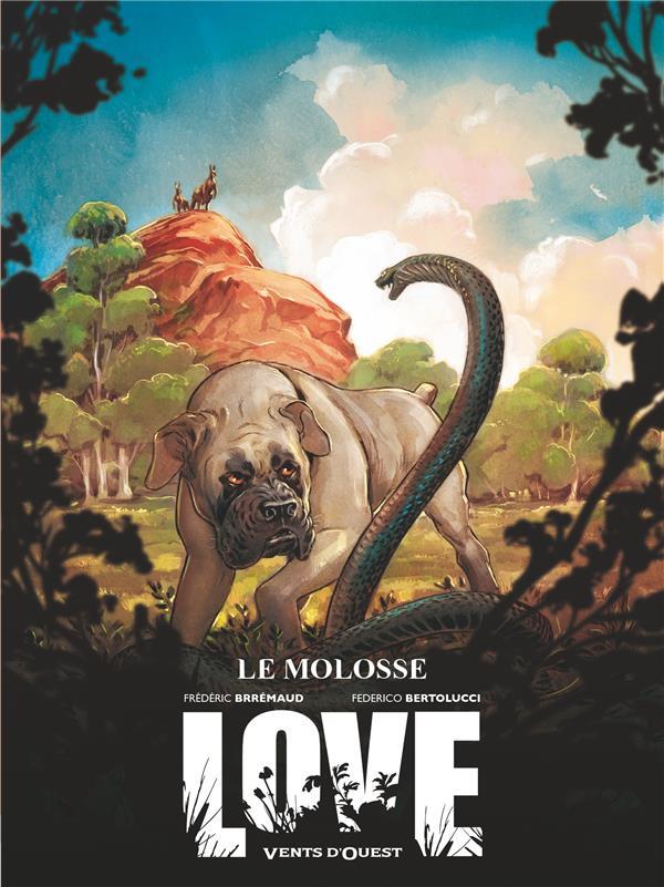 LOVE T.5  -  MOLOSSE
