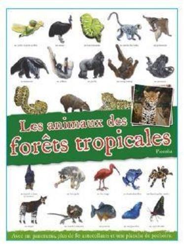 LES ANIMAUX DE LA FORET TROPICALE COLLECTIF PICCOLIA