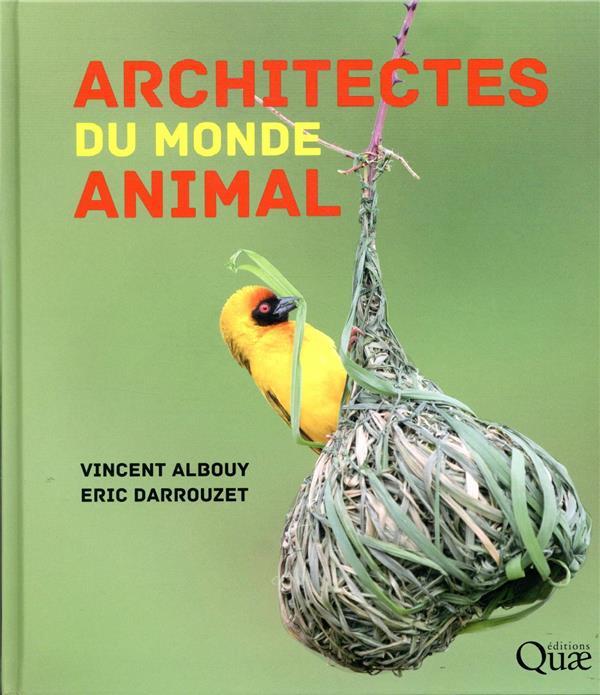ARCHITECTES DU MONDE ANIMAL ALBOUY/DARROUZET QUAE