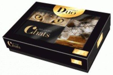 COFFRET DUO CALENDRIER GEO - CHATS EN 365 JOURS Géo Play Bac