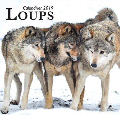 LOUPS CALENDRIER 2019  PLACE VICTOIRES