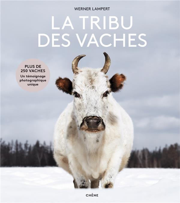 LA TRIBU DES VACHES  -  DES AUROCHS AUX VACHES SACREES LAMPERT WERNER LE CHENE