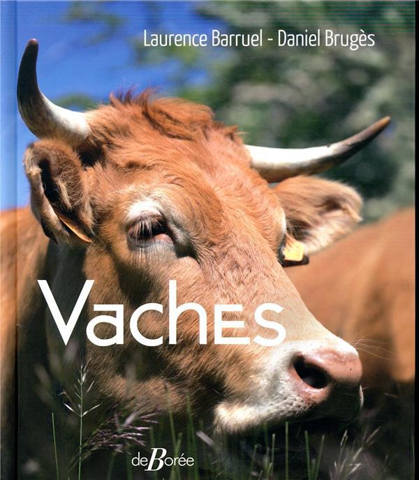 VACHES BRUGES/BARRUEL DE BOREE