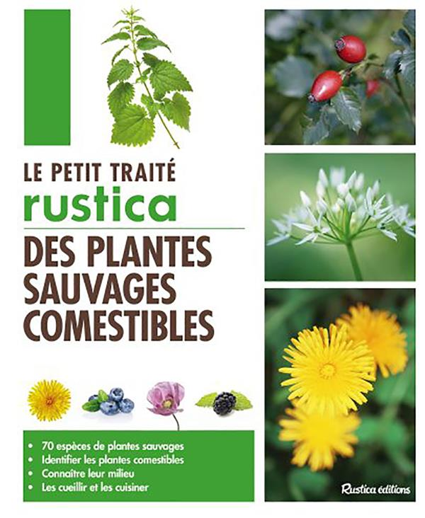 LE PETIT TRAITE DES PLANTES SAUVAGES COMESTIBLES Monplaisir Christophe Rustica