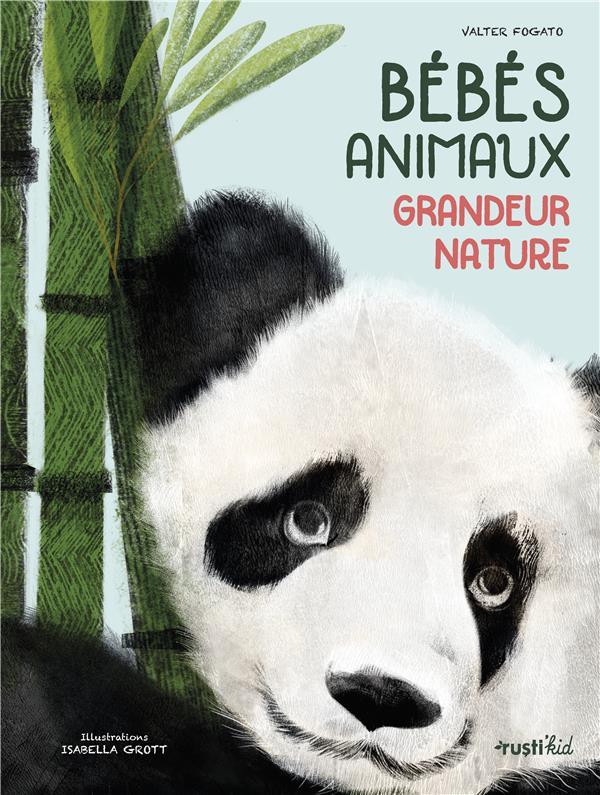 BEBES ANIMAUX GRANDEUR NATURE