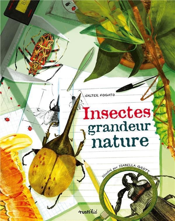 INSECTES GRANDEUR NATURE -