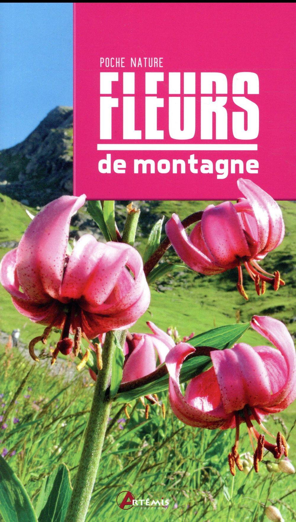 FLEURS DE MONTAGNE COLLECTIF Artémis
