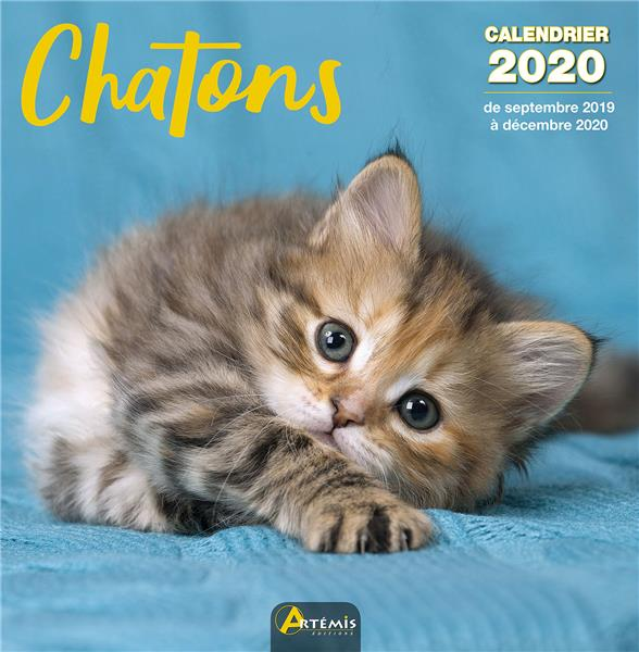 CALENDRIER CHATONS (2020) COLLECTIF ARTEMIS