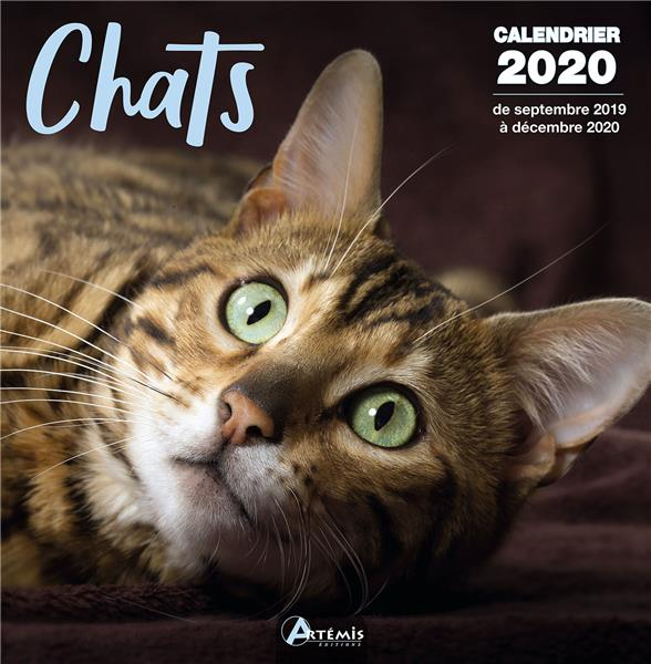 CALENDRIER CHATS (2020) COLLECTIF ARTEMIS