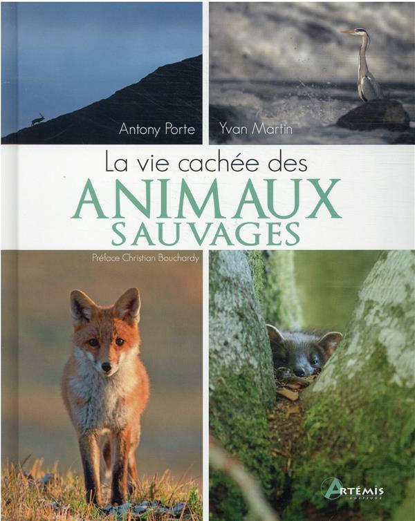 LA VIE CACHEE DES ANIMAUX SAUVAGES PORTE ANTONY/MARTIN ARTEMIS