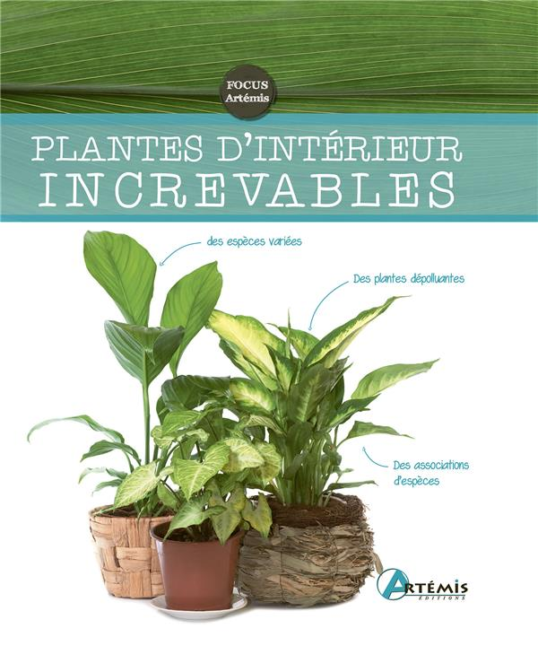 PLANTES D'INTERIEUR INCREVABLES COLLECTIF ARTEMIS