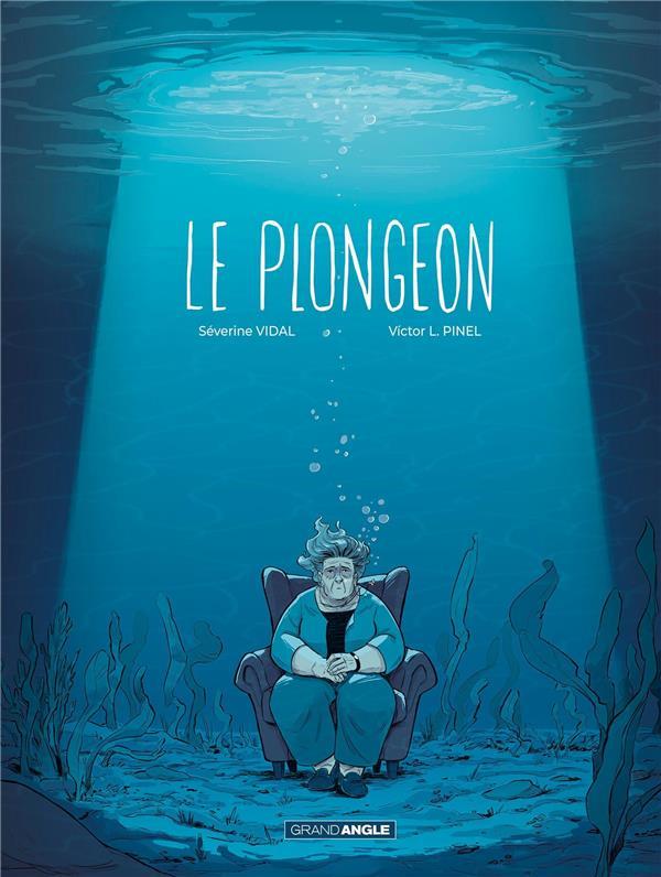PLONGEON (LE)  HISTOIRE COMPLETE