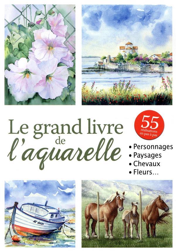 GRAND LIVRE DE L'AQUARELLE (LE) BOYKO NATALY EURO SERVICE