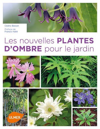 LES NOUVELLES PLANTES D'OMBRE POUR LE JARDIN BASSET/HALLE Ulmer