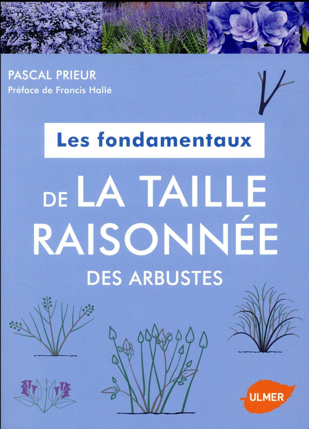 LES FONDAMENTAUX DE LA TAILLE RAISONNEE DES ARBUSTES