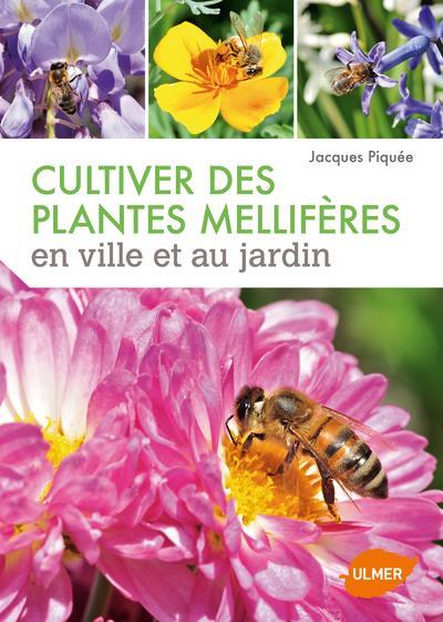 CULTIVER DES PLANTES MELLIFERES EN VILLE ET AU JARDIN PIQUEE JACQUES Ulmer