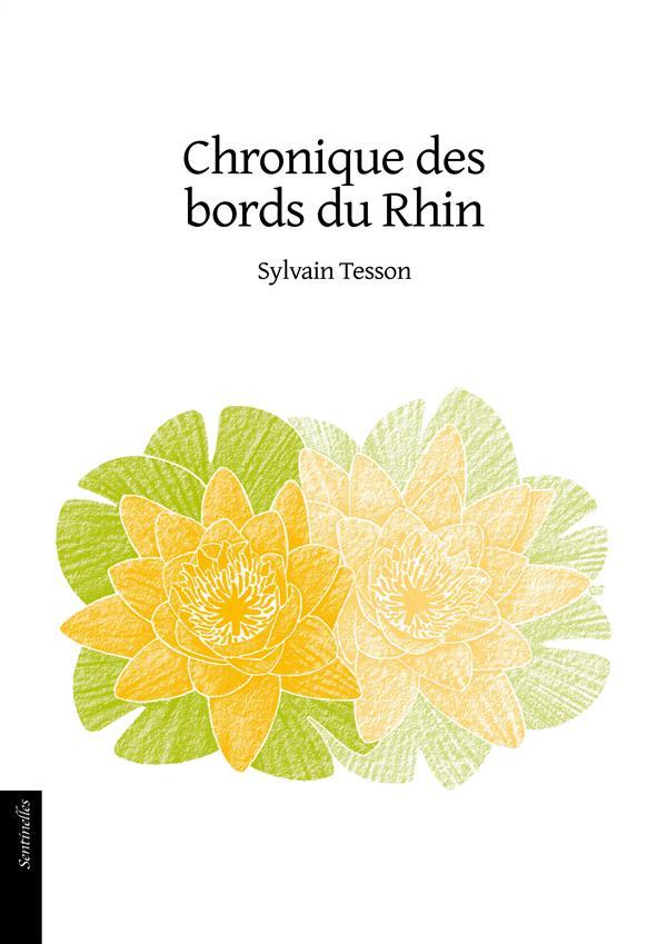CHRONIQUE DES BORDS DU RHIN TESSON SYLVAIN le Verger éditeur
