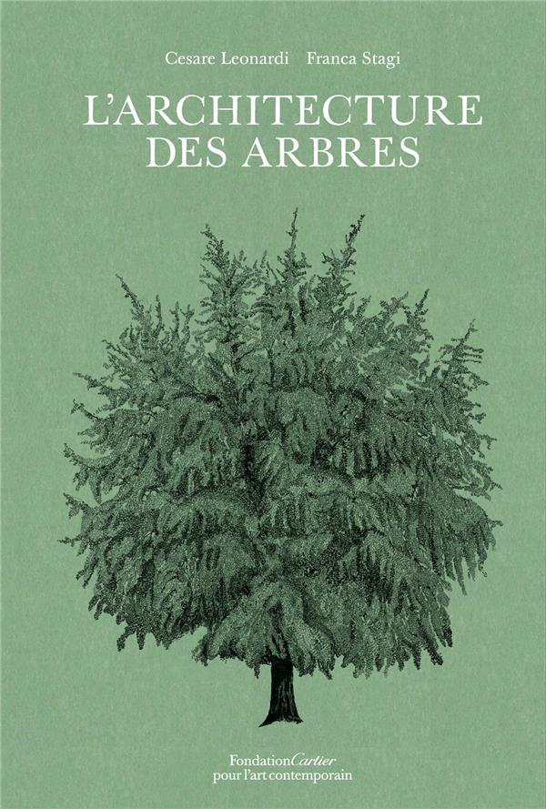 L'ARCHITECTURE DES ARBRES