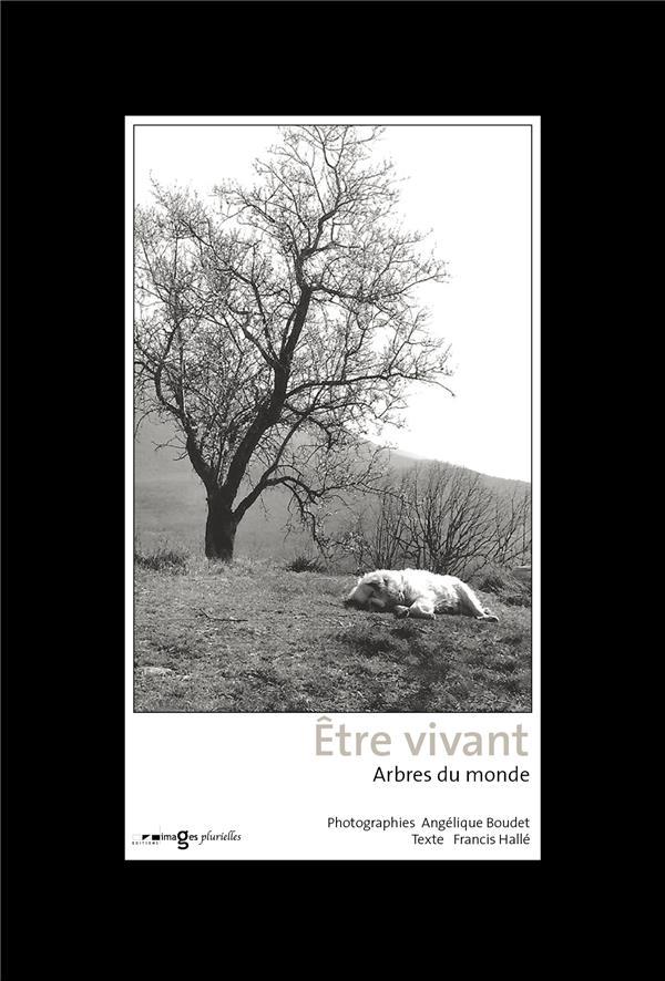 ETRE VIVANT  -  ARBRES DU MONDE