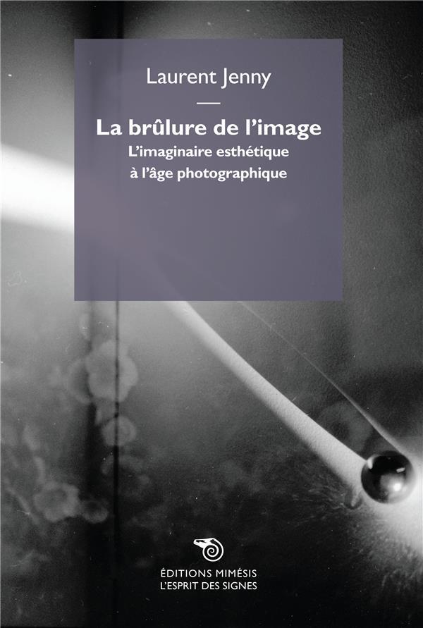 LA BRULURE DE L'IMAGE  -  L'IMAGINAIRE ESTHETIQUE A L'AGE PHOTOGRAPHIQUE