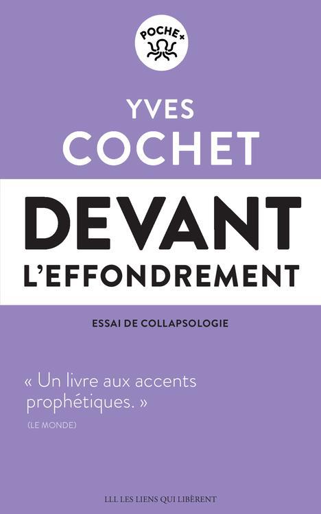 DEVANT L-EFFONDREMENT - ESSAI DE COLLAPSOLOGIE