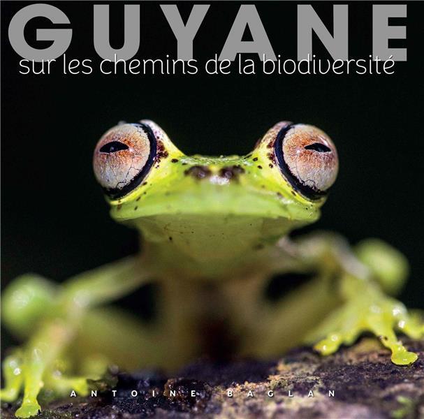 GUYANE - SUR LES CHEMINS DE LA BIODIVERSITE