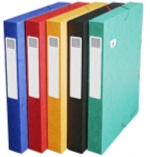 BOITE DE CLASSEMENT EXABOX DOS 40MM CARTE LUSTREE SCOTTEN NATURE FUTURE EXACOMPTA Lgdj