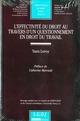 EFFECTIVITE DU DROIT AU TRAVERS D'UN QUESTIONNEMENT EN DROIT DU TRAVAIL, T.528 (L')