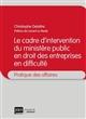 LE CADRE D INTERVENTION DU MINISTERE PUBLIC EN DROIT DES ENTREPR. EN DIFFICULTE