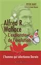 Alfred R. Wallace, l'explorateur de l'évolution Raby Peter Ed. de l'évolution
