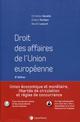 DROIT DES AFFAIRES DE L'UNION EUROPEENNE (8E EDITION)