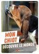 MON CHIOT DECOUVRE LE MONDE JOACHIM KARIM ARTEMIS