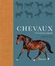 CHEVAUX - UNE HISTOIRE NATURELLE DEBBIE BUSBY / CATRI ARTEMIS